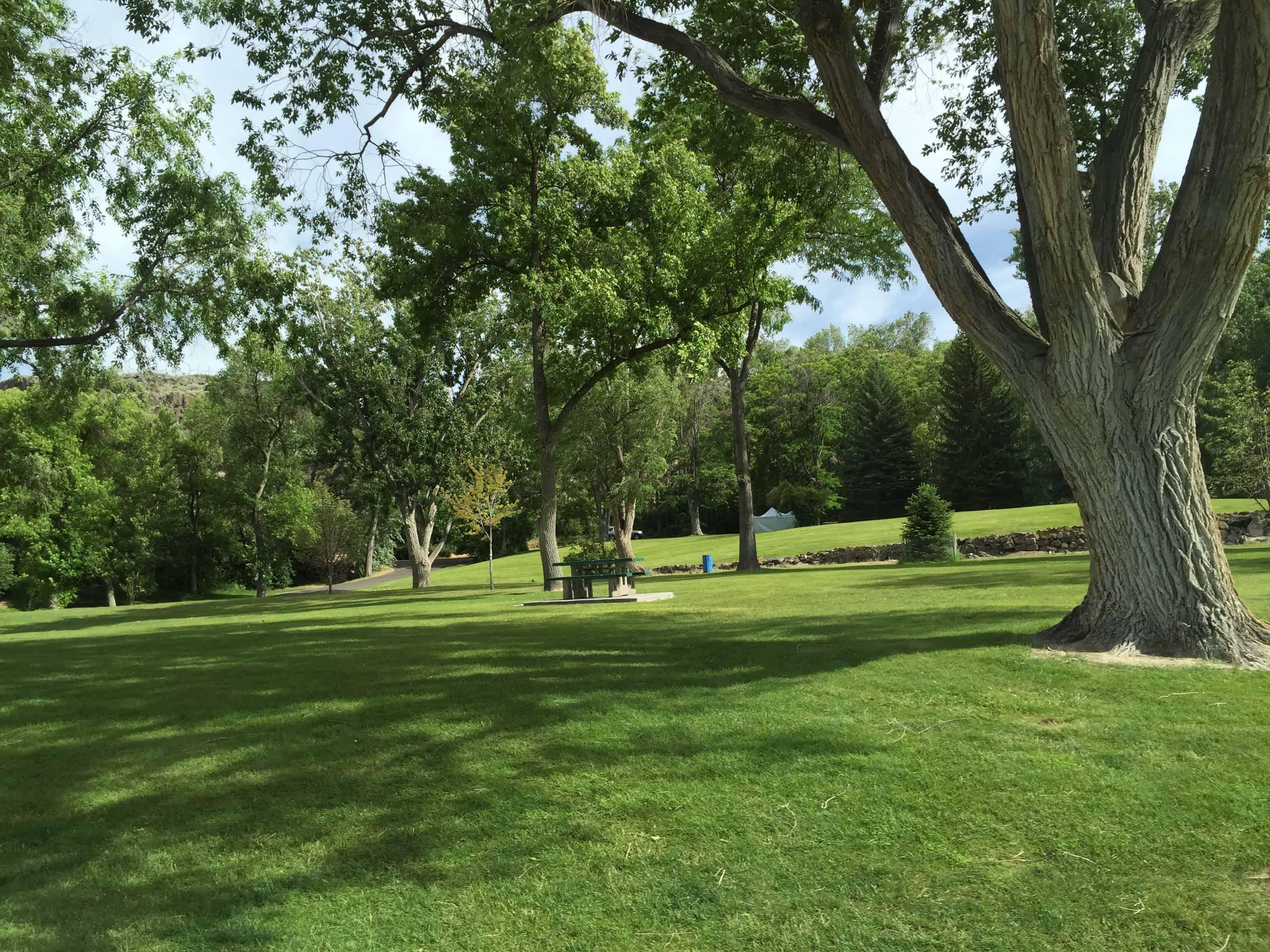 shoshone_falls_picnic